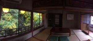 IMG_0933黄花亜麻2階