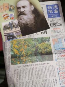 徳島新聞夕刊2015.11.26 黄花亜麻